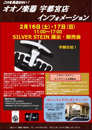silver stein